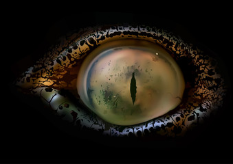 Crocodile Eye Macro - Detailed and Realistic Illustration On Black Background, Vector