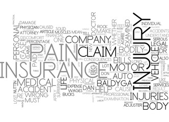 AUTO ACCIDENT INSURANCE CLAIM PERSONAL INJURY INSIGHTS TEXT WORD CLOUD CONCEPT