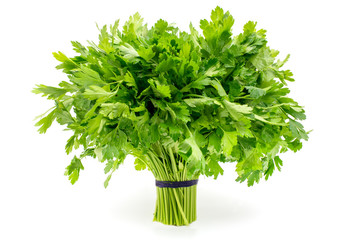 Bouquet of parsley isolated