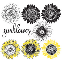 Sunflower. Vector illustration of seven different isolated elements for design.