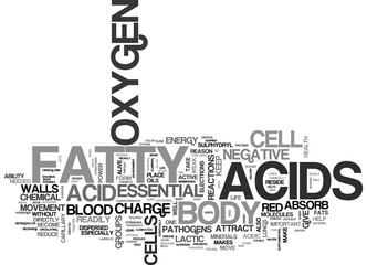 WHAT DO ESSENTIAL FATTY ACIDS DO IN YOUR BODY TEXT WORD CLOUD CONCEPT