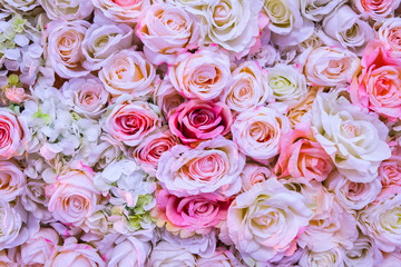 Background of pink orange and peach roses.Beautiful flowers background for wedding scene