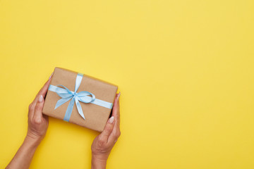 Fantastic wrapped present decorated with bow in woman hands