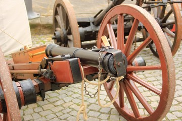 Cannon medieval war weapon