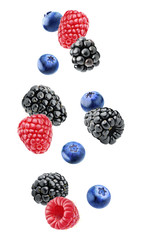 Isolated berries. Falling blackberry, raspberry and blueberry fruits isolated on white background with clipping path