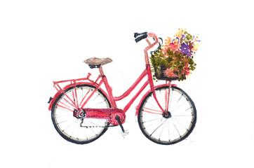 Retro red bicycle with flowers on white, hand drawn watercolor illustrator