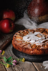 Homemade rustic Italian apple pie, a mug of milk, a pot of chamomile flowers, two raw fresh apples, a jug and meadow flowers on a wooden old vintage table. Dark background. Seasonal bakery concept