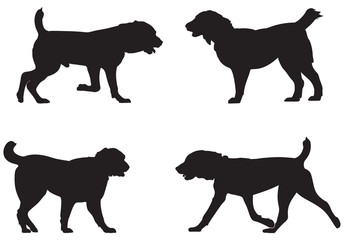 Alabai, Central Asian Shepherd Dog Breed Silhouettes, Central Asian Ovcharka vector illustration from Dog Show silhouette series