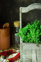 Fresh garden herbs, thyme in wood garden box, rustic kitchen interior, utensils, earthenware, chili peppers, authentic natural atmosphere
