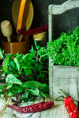 Variety of fresh organic herbs, thyme in wood garden box, green purple basil, chili peppers, rural kitchen interior, utensils, crockery, cozy atmosphere
