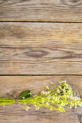 Flowering ground cover plants on wooden background.