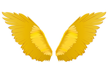 Wings. Vector illustration. Golden metal