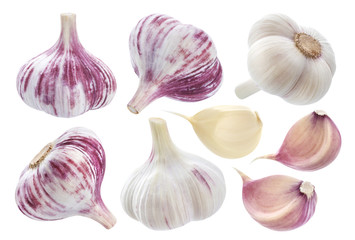 Isolated garlic. Whole garlic, one segment and clove isolated on white background