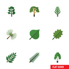 Flat Icon Natural Set Of Timber, Alder, Spruce Leaves And Other Vector Objects. Also Includes Willow, Wood, Hickory Elements.