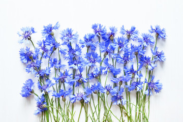 blue cornflowers over white