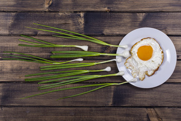 Egg , chives and white plate look like sperm competition, Spermatozoons floating to ovule in wooden background