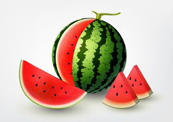Watermelon and Sliced watermelon set, fruit vector illustration