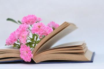 Beautiful flowers lying in the open book.