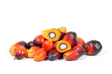 Oil Palm Fruit Product