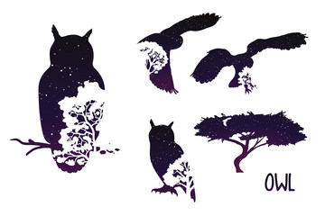 Owl Silhouette With Night Sky And Trees. Set Vector Illustration With Double Exposition.