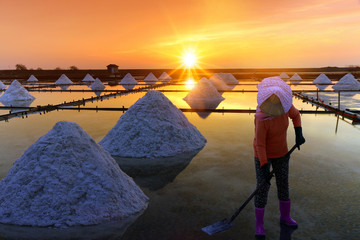 A woman are working on salt field at dawn. Salt field in Tainan, Taiwan