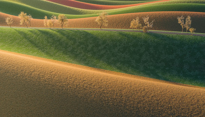 3d Rendering of Fields at Dawn