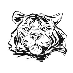 Hand drawn vector abstract ink graphic rough tiger head illustration isolated on white background.Nature tribal wild life concept.