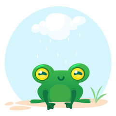 Cute Frog Cartoon Character. Vector illustration isolated