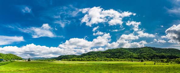 北海道 大自然 牧場