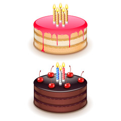 Birthday cake with candles isolated on white vector