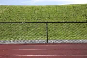 Simle field