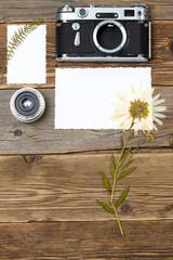 lens, retro camera and pressed plant