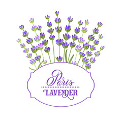 Wall Mural - The lavender elegant card with bouquet of flowers and text. Lavender garland for your text presentation. Label of soap package. Label with lavender flowers. Vector illustration.