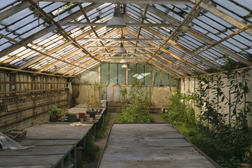 Architecture of a greenhouse