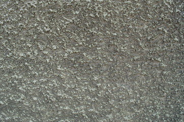 Stippled effect on plaster applied to a wall in dirty grey