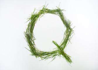 Q letter of alphabet written with fresh green grass