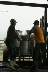 Fazenda de leiteiro