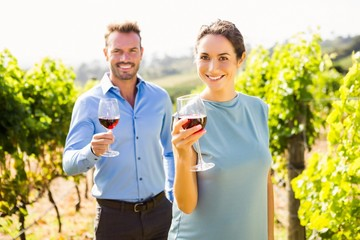 Portrait of smiling couple holding wineglasses at vineyard