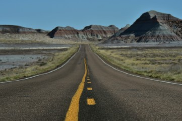 Road through Petrified Forest