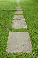 Walk path concrete block with green grass and tree roots in the garden