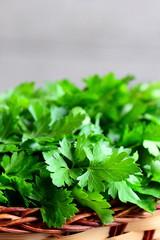 Fresh parsley herbs. Parsley sprigs in a wicker basket. Vertical photo