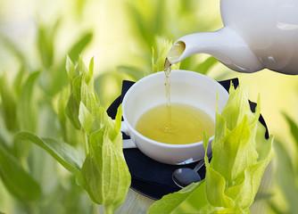greek fresh tea leaves cup of hot tea