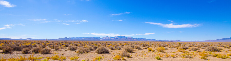 Desert panorama near Area 51