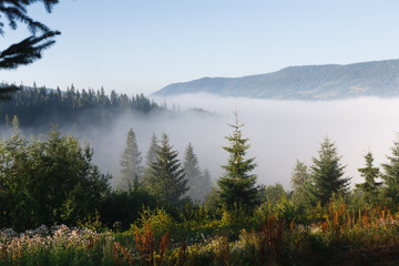 Morning in mountains, landscape background