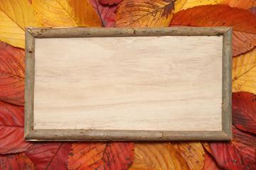 秋イメージ 落ち葉と木の板