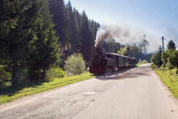 Mocanita Hutulca, Bucovina. Mountain touristic railroad train