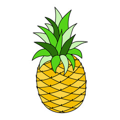 Pineapple fruit. Large isolated on white cartoon vector picture for children education and preschool books.