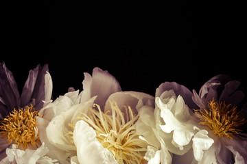 Fotobehang white peonies