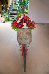 Group of roses in basket decorate on old bicycle.