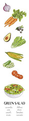 vector hand drawn illustration with green salad ingredients